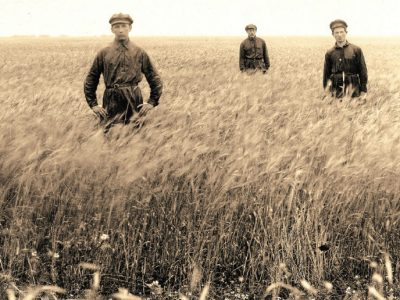 Wheat field of the Khaklai colony, Dzhankoi raion, Crimea, 1926. YIVO Institute for Jewish Research, New York
