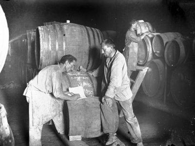 """Винороби колгоспу """"Дер вег цум соціалізмус"""". Зліва — Соломон Шраге, справа – голова колгоспу Ілля Глауштейн. Калініндорфський єврейський національний район, до 1936 р."""